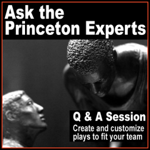 Ask-the-Princeton-Experts